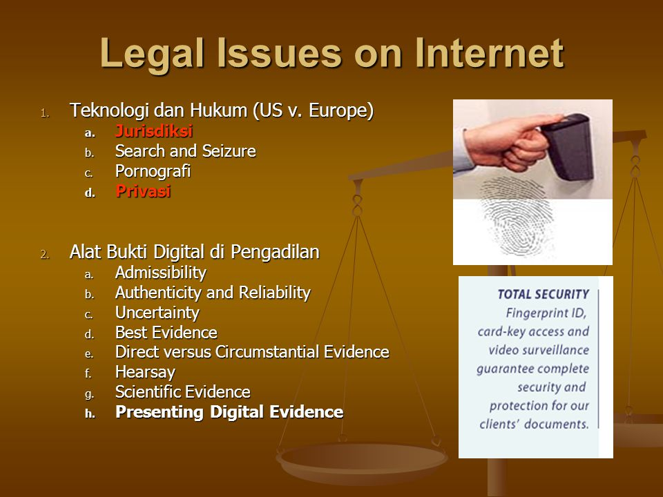 Legal Issues on Internet