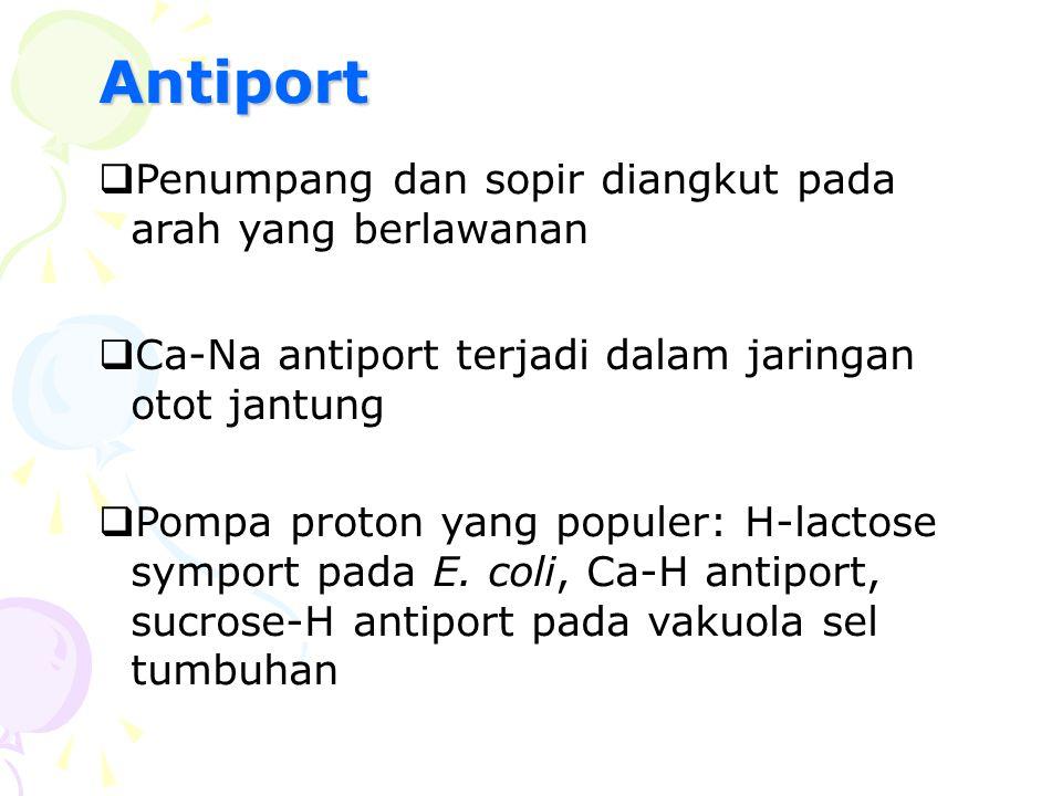 Antiport Penumpang dan sopir diangkut pada arah yang berlawanan