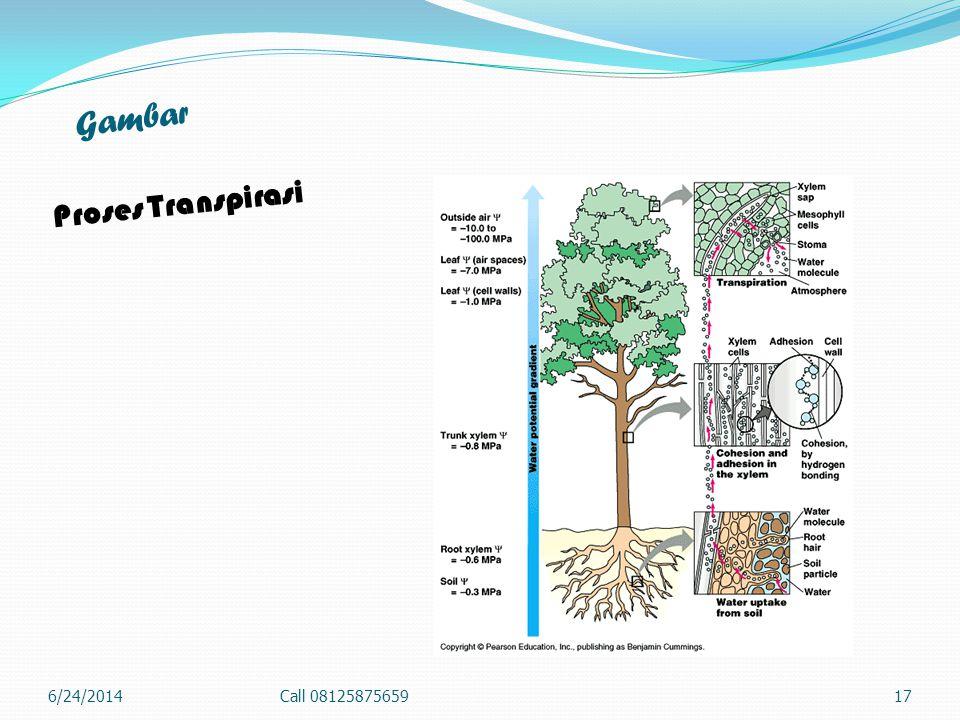 Gambar Proses Transpirasi 4/3/2017 Call 08125875659