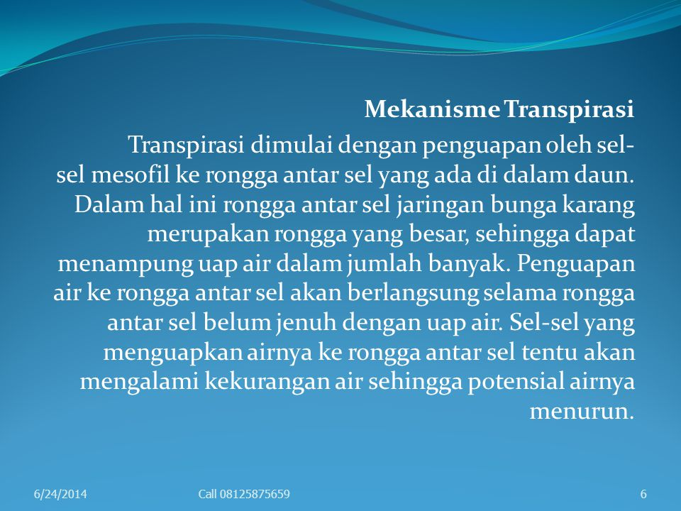 Mekanisme Transpirasi