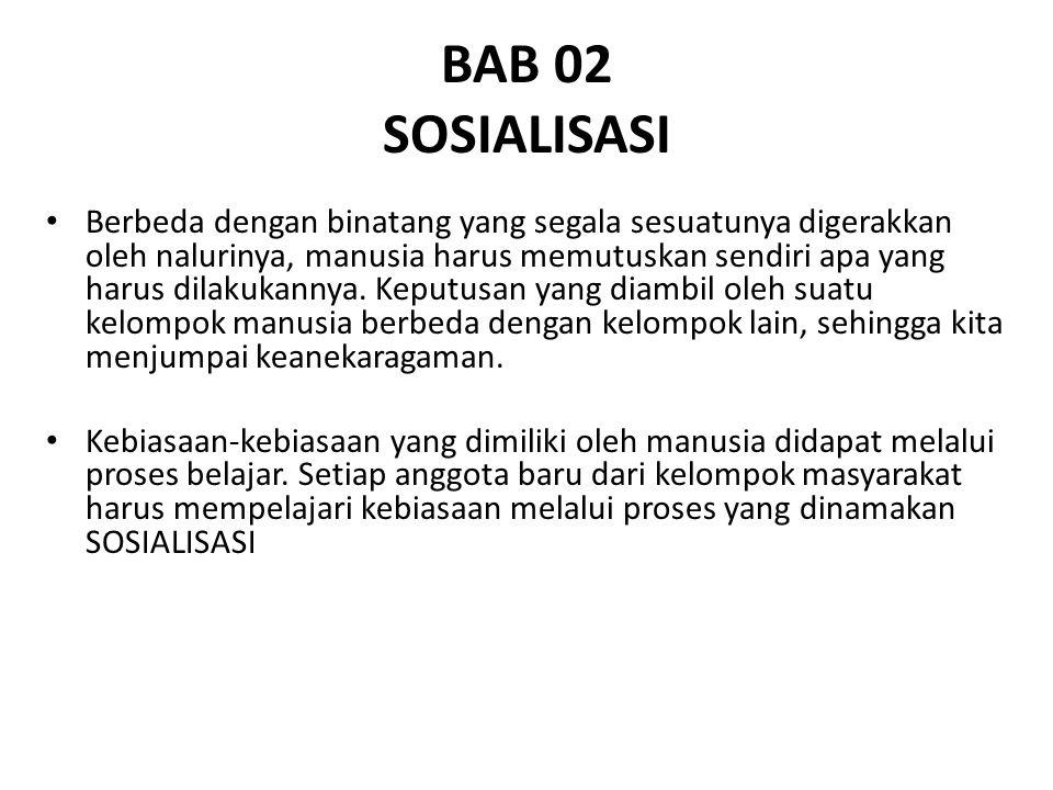 BAB 02 SOSIALISASI