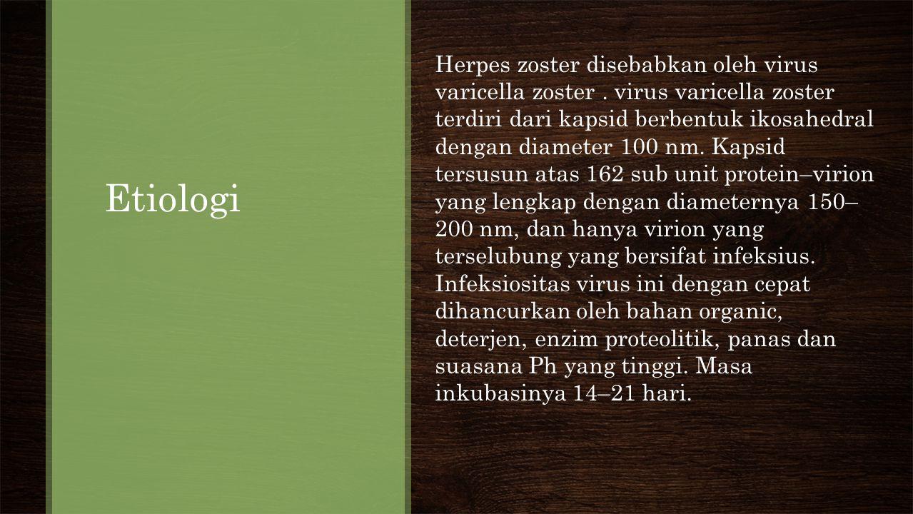 Herpes zoster disebabkan oleh virus varicella zoster