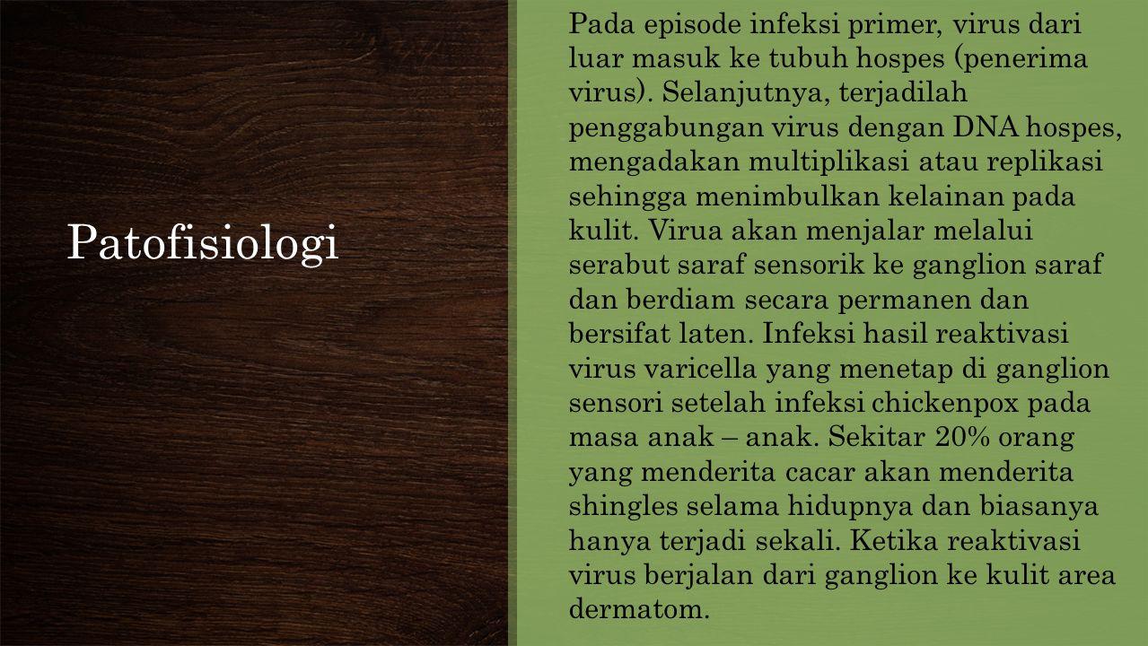 Pada episode infeksi primer, virus dari luar masuk ke tubuh hospes (penerima virus). Selanjutnya, terjadilah penggabungan virus dengan DNA hospes, mengadakan multiplikasi atau replikasi sehingga menimbulkan kelainan pada kulit. Virua akan menjalar melalui serabut saraf sensorik ke ganglion saraf dan berdiam secara permanen dan bersifat laten. Infeksi hasil reaktivasi virus varicella yang menetap di ganglion sensori setelah infeksi chickenpox pada masa anak – anak. Sekitar 20% orang yang menderita cacar akan menderita shingles selama hidupnya dan biasanya hanya terjadi sekali. Ketika reaktivasi virus berjalan dari ganglion ke kulit area dermatom.