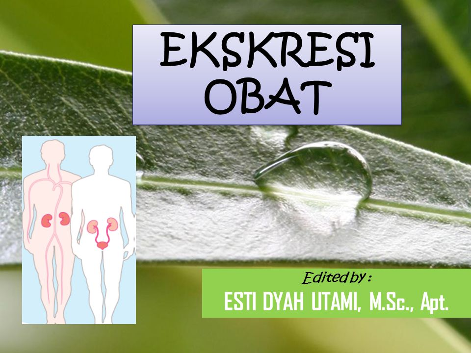 EKSKRESI OBAT ESTI DYAH UTAMI, M.Sc., Apt. Edited by :