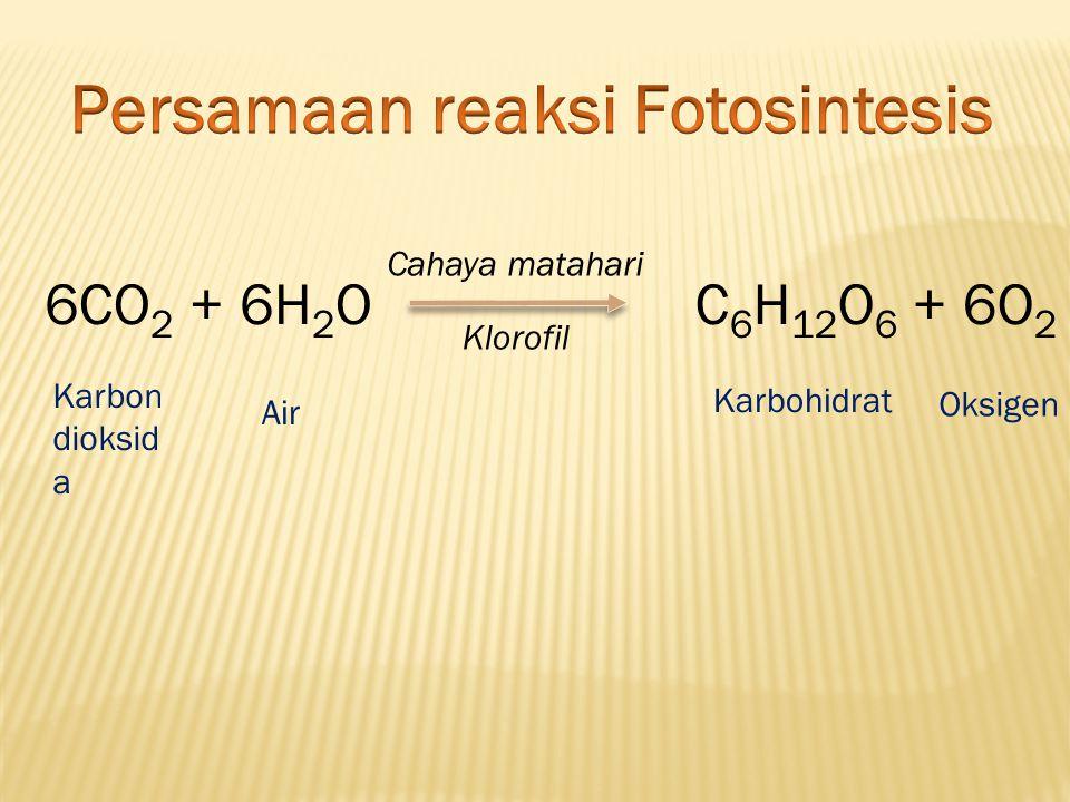 Persamaan reaksi Fotosintesis