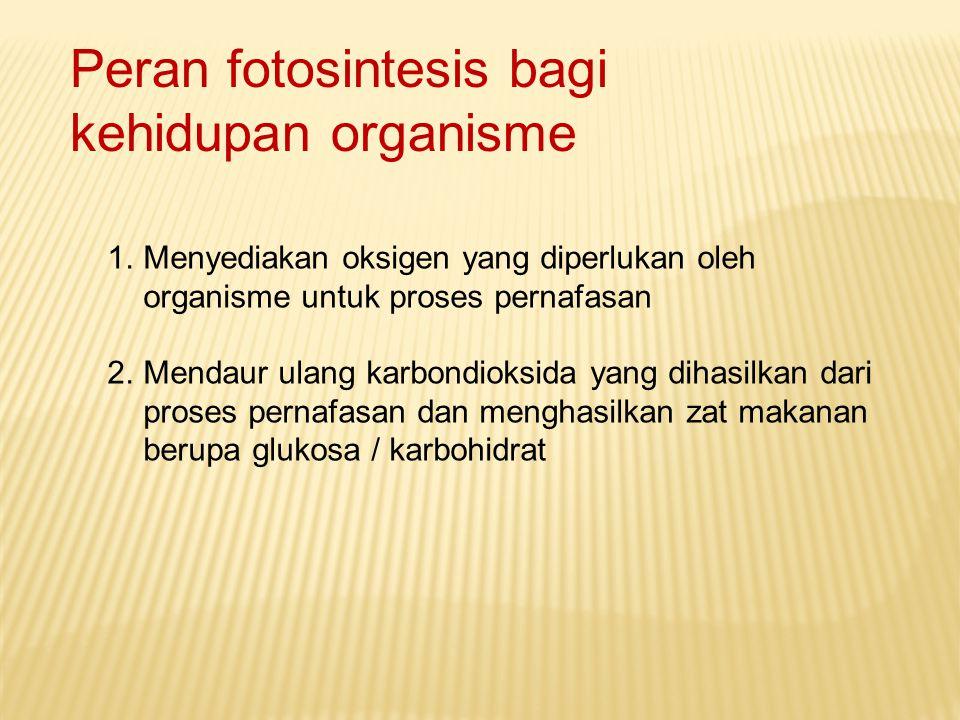 Peran fotosintesis bagi kehidupan organisme
