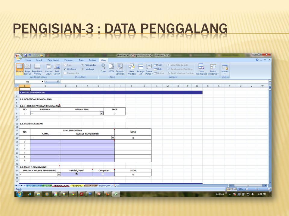 Pengisian-3 : Data PENGGALANG
