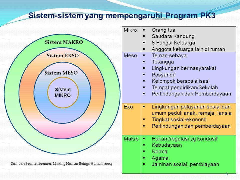 Sistem-sistem yang mempengaruhi Program PK3