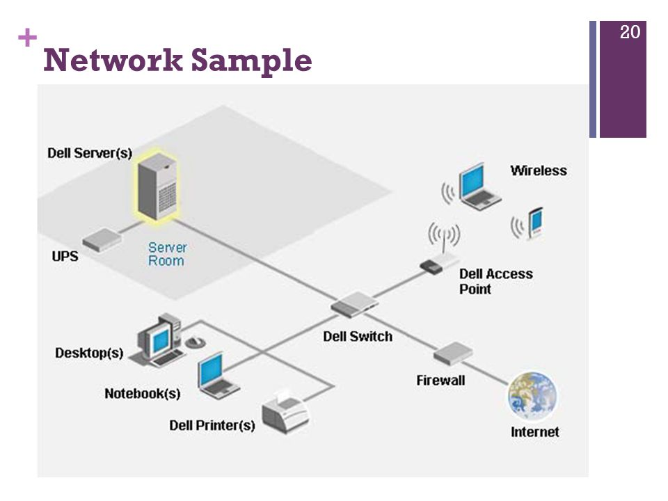 Network Sample