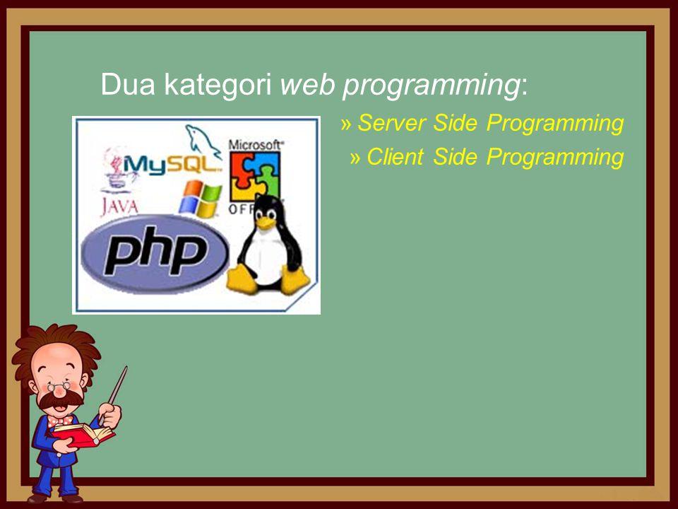 Dua kategori web programming: