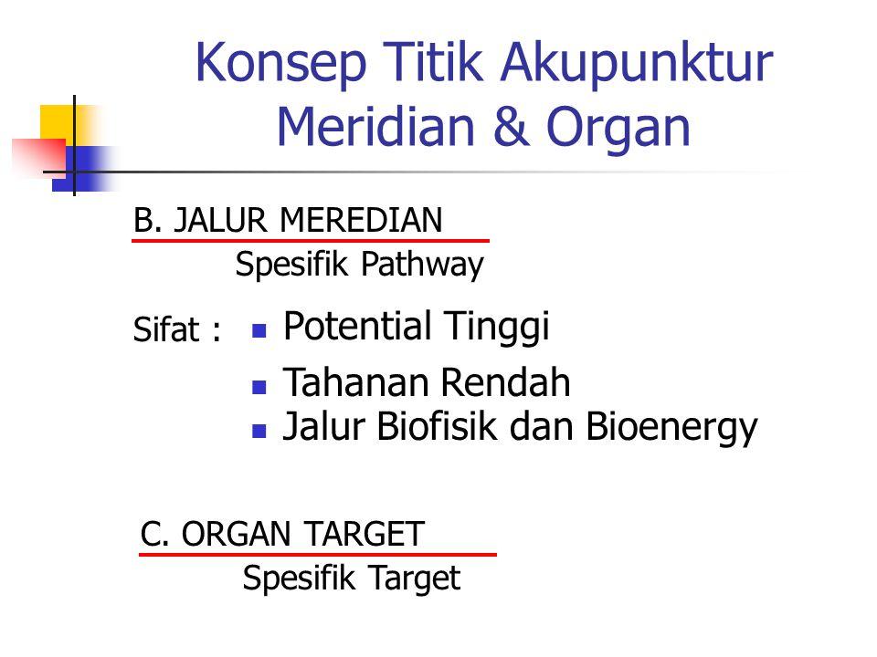 Konsep Titik Akupunktur Meridian & Organ