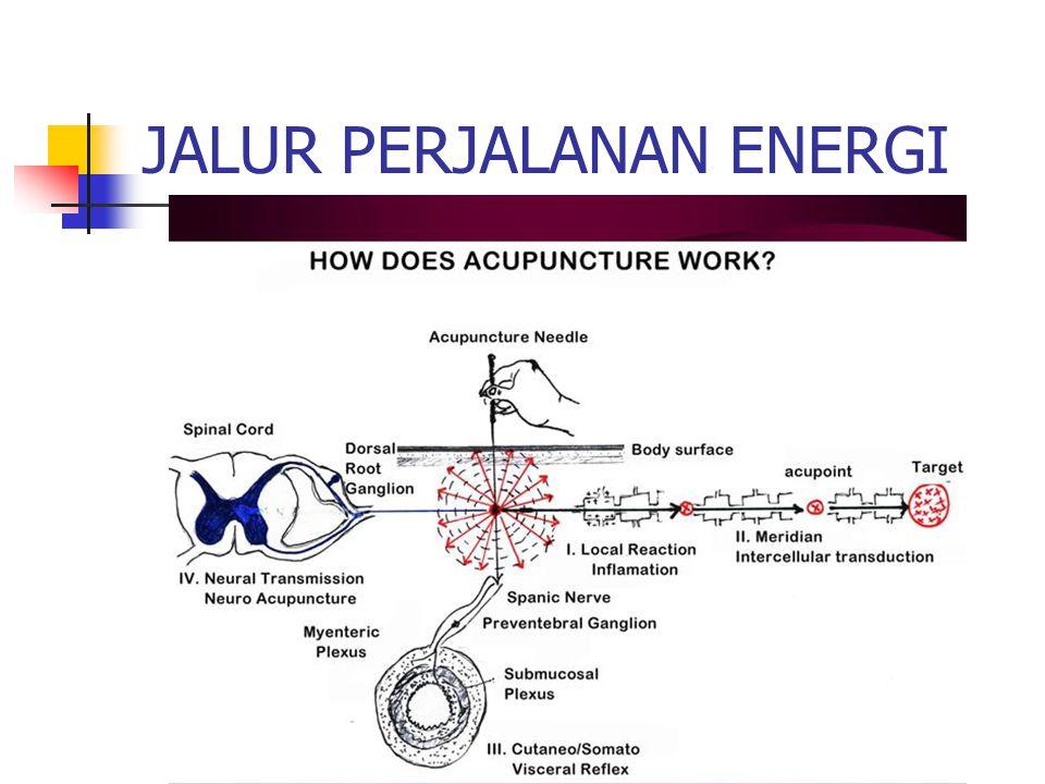 JALUR PERJALANAN ENERGI