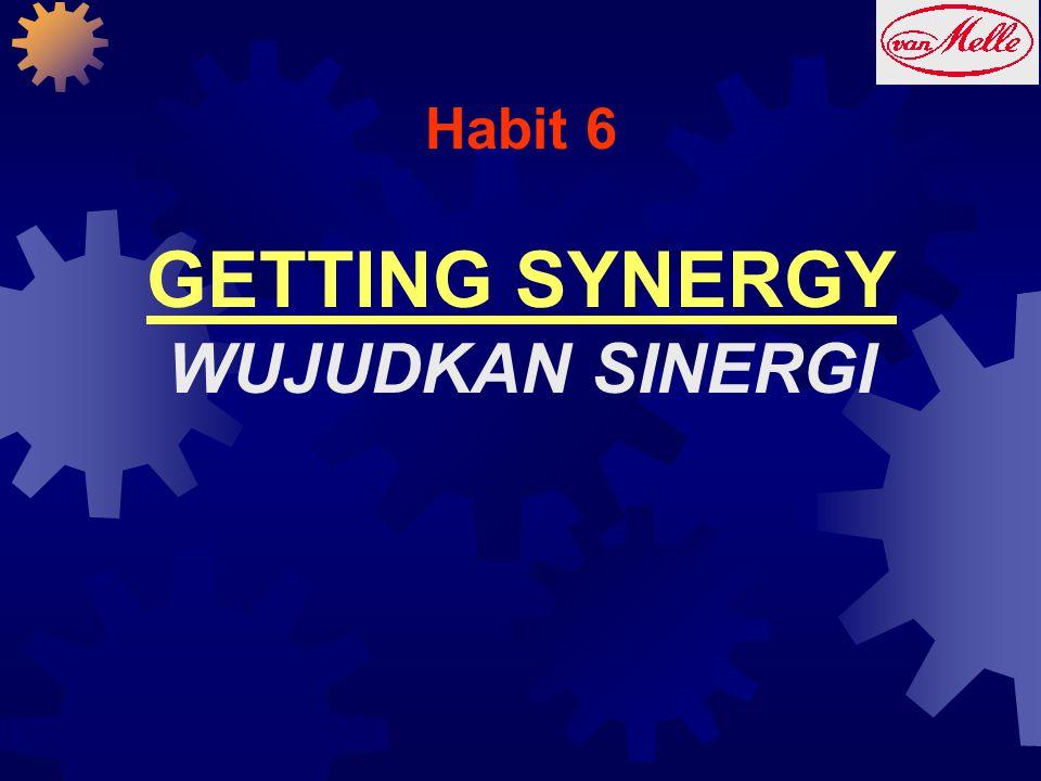 Habit 6 GETTING SYNERGY WUJUDKAN SINERGI