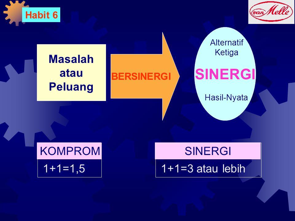 SINERGI Masalah atau Peluang KOMPROMI SINERGI 1+1=1,5 1+1=3 atau lebih