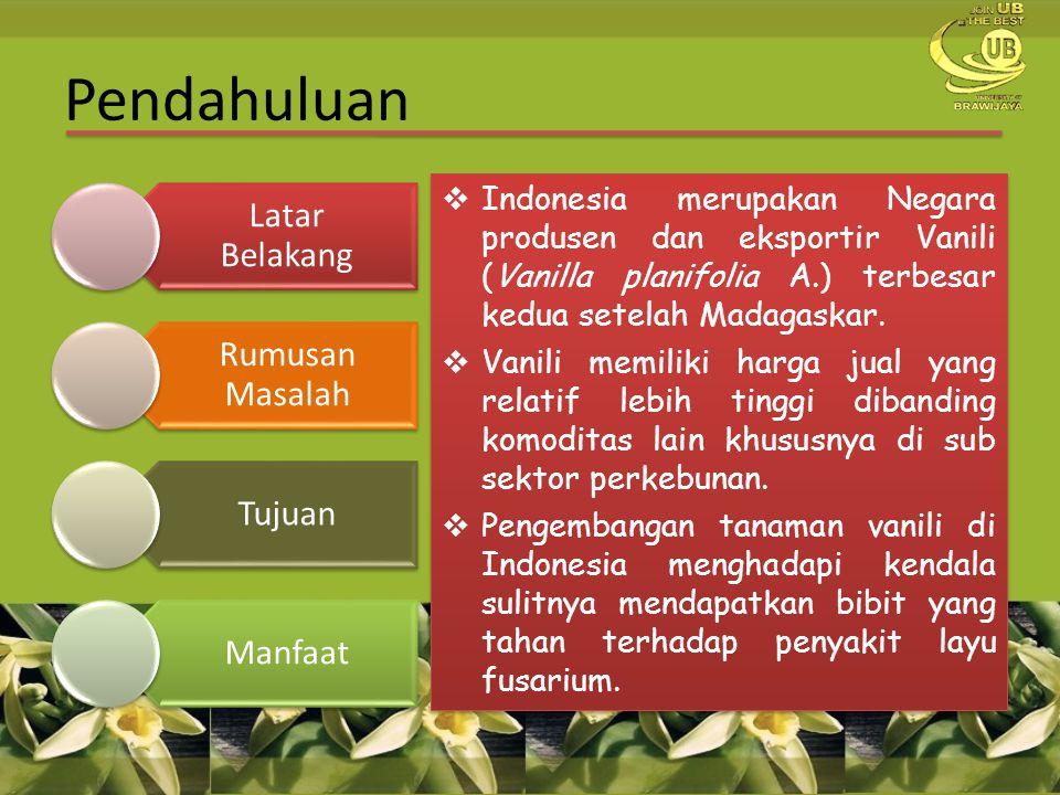 Pendahuluan Indonesia merupakan Negara produsen dan eksportir Vanili (Vanilla planifolia A.) terbesar kedua setelah Madagaskar.
