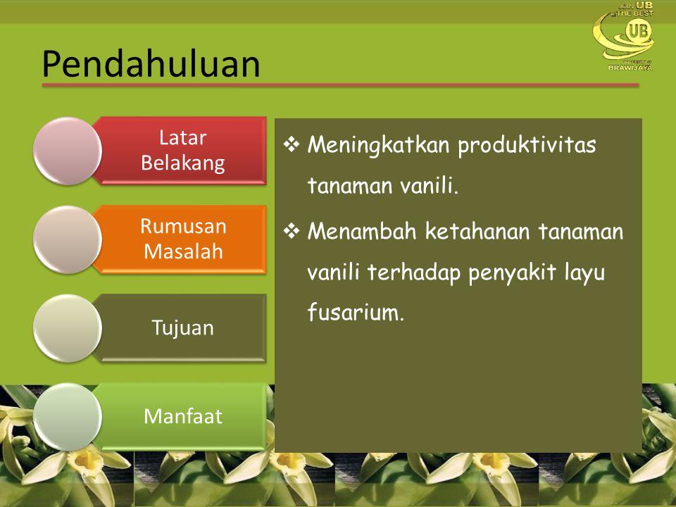 Pendahuluan Meningkatkan produktivitas tanaman vanili.