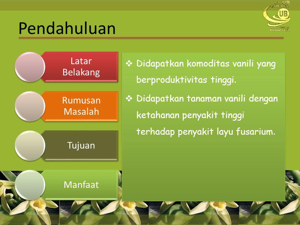 Pendahuluan Didapatkan komoditas vanili yang berproduktivitas tinggi.