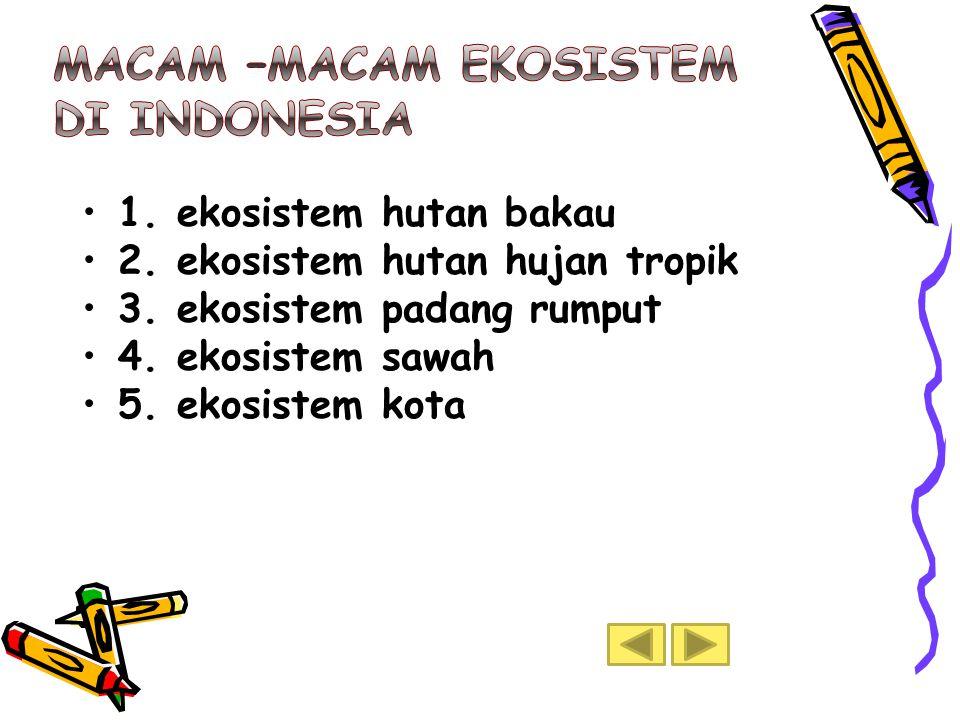 Macam –macam ekosistem di Indonesia