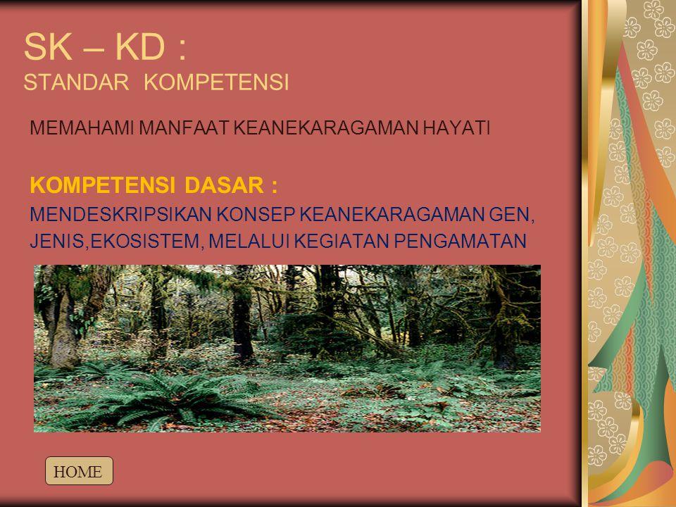 SK – KD : STANDAR KOMPETENSI