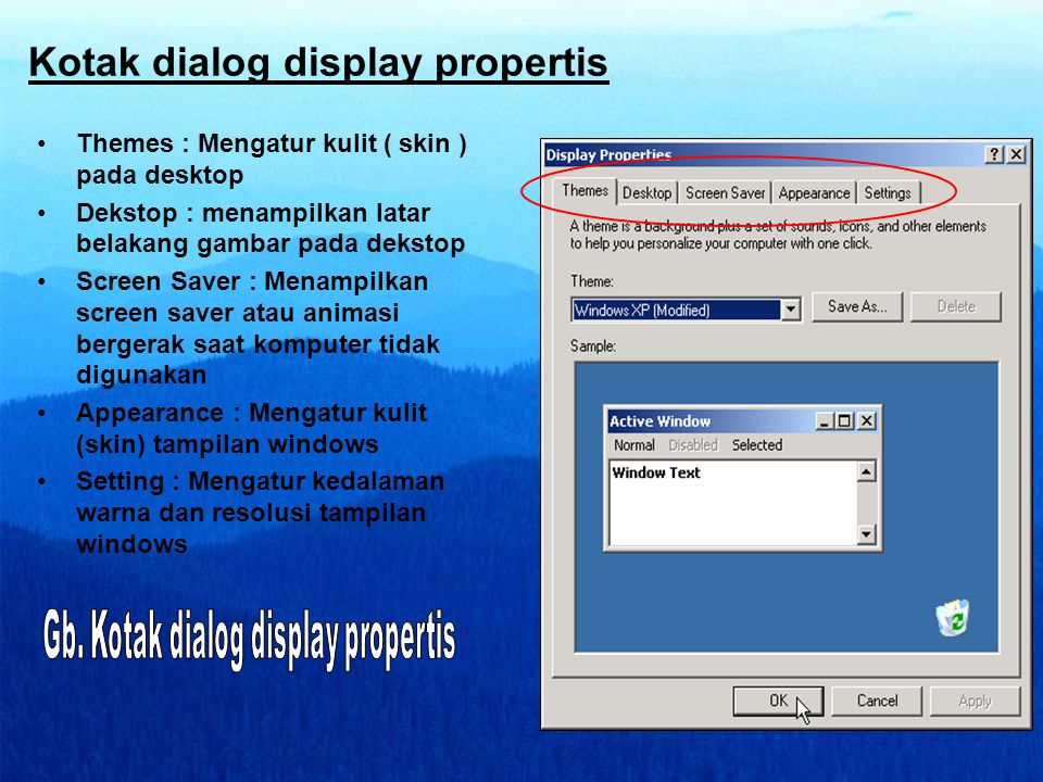Kotak dialog display propertis