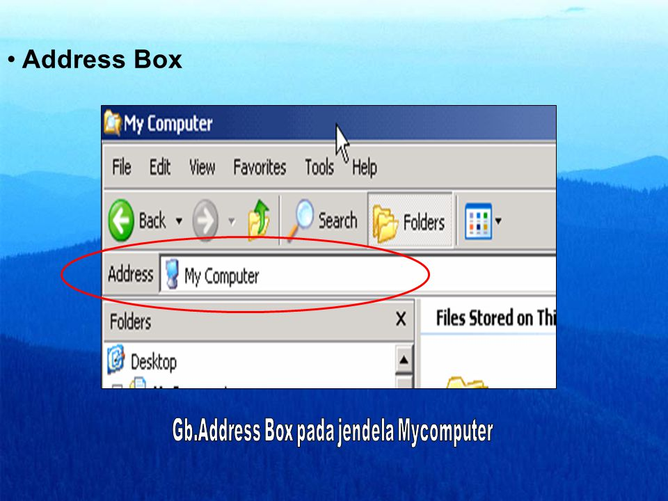 Gb.Address Box pada jendela Mycomputer
