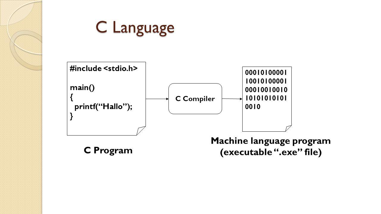 Machine language program (executable .exe file)