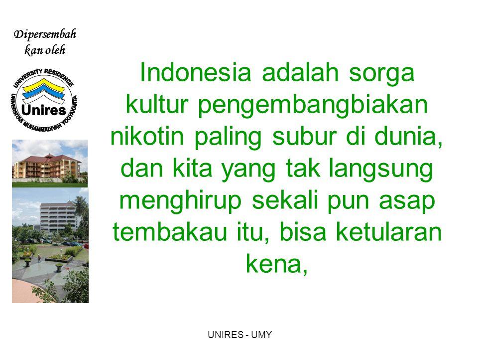 Indonesia adalah sorga kultur pengembangbiakan nikotin paling subur di dunia, dan kita yang tak langsung menghirup sekali pun asap tembakau itu, bisa ketularan kena,