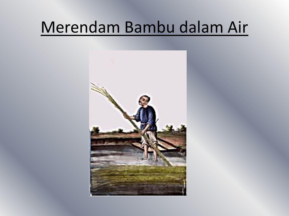 Merendam Bambu dalam Air