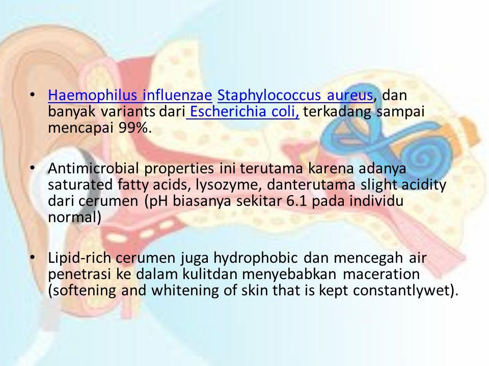Haemophilus influenzae Staphylococcus aureus, dan banyak variants dari Escherichia coli, terkadang sampai mencapai 99%.