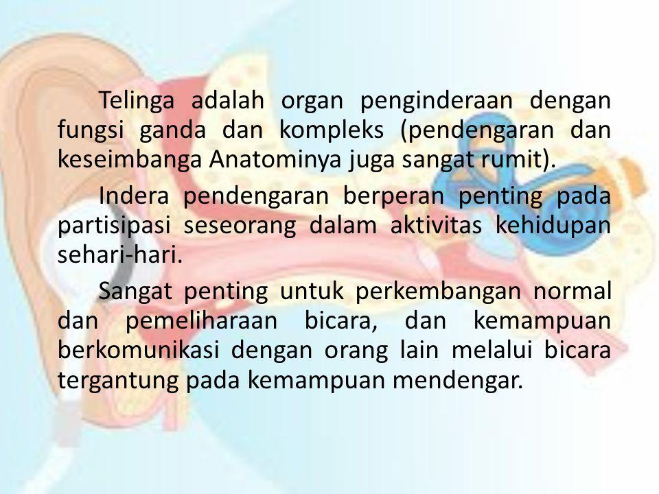 Telinga adalah organ penginderaan dengan fungsi ganda dan kompleks (pendengaran dan keseimbanga Anatominya juga sangat rumit).