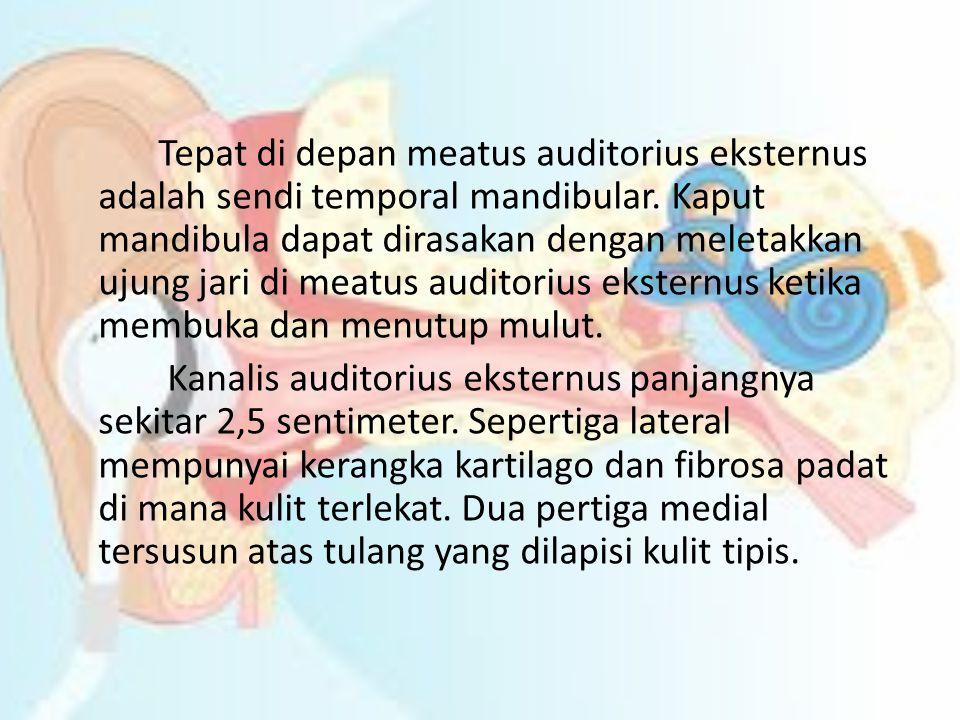 Tepat di depan meatus auditorius eksternus adalah sendi temporal mandibular.