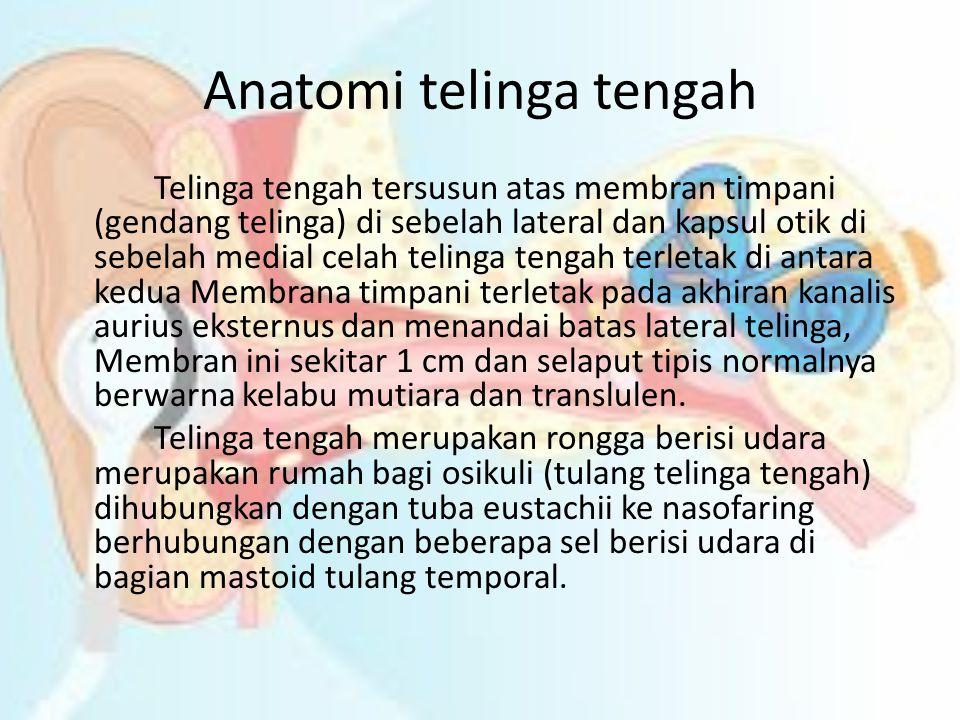 Anatomi telinga tengah