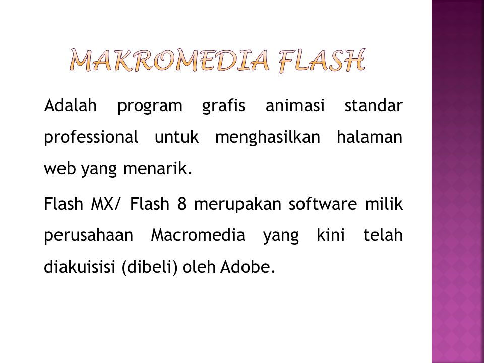 Makromedia Flash