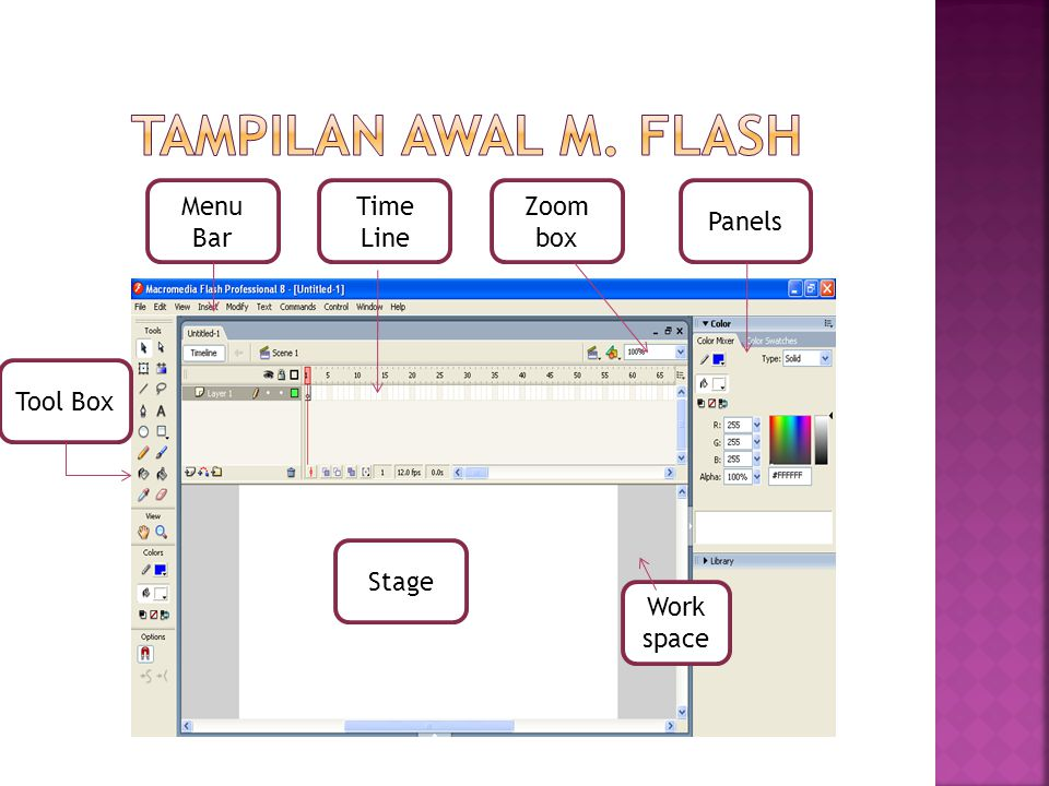 Tampilan awal m. Flash Menu Bar Time Line Zoom box Panels Tool Box