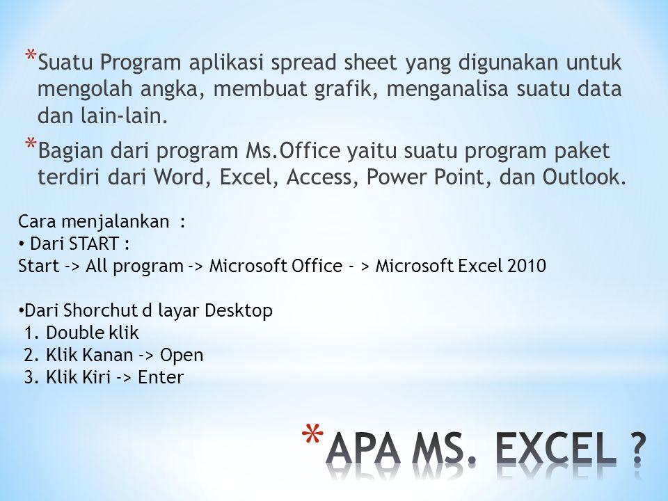 Suatu Program aplikasi spread sheet yang digunakan untuk mengolah angka, membuat grafik, menganalisa suatu data dan lain-lain.