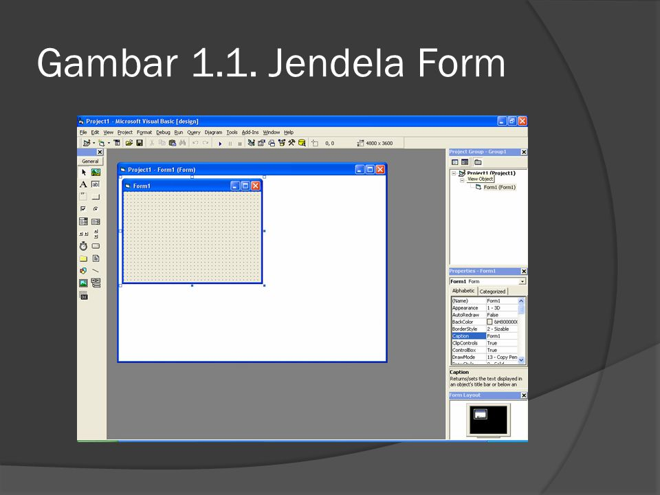 Gambar 1.1. Jendela Form