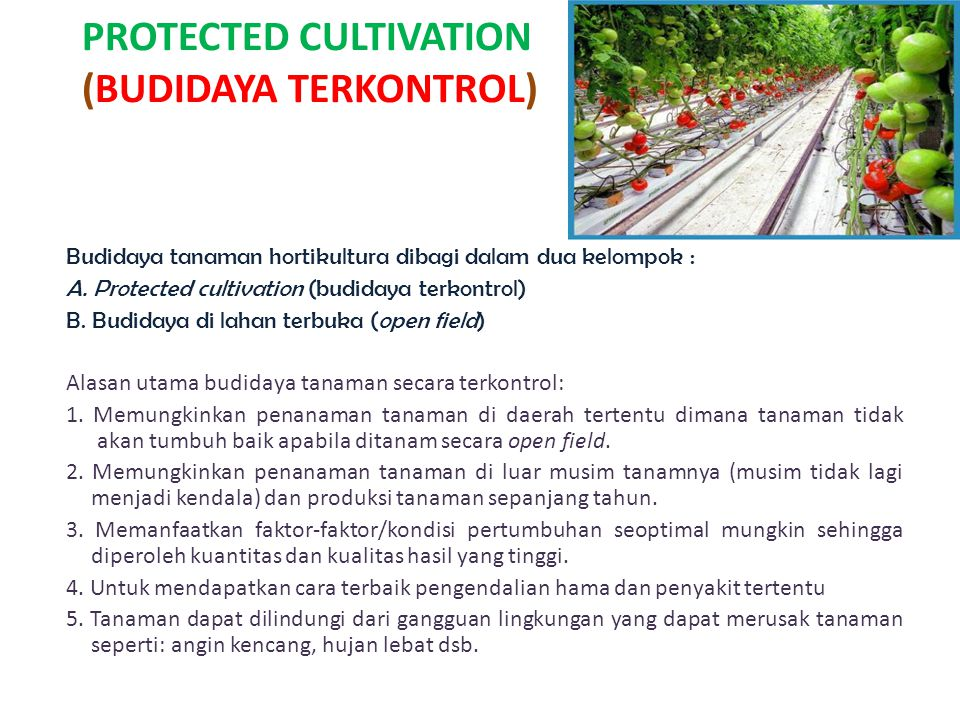 PROTECTED CULTIVATION (BUDIDAYA TERKONTROL)