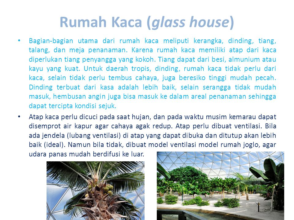 Rumah Kaca (glass house)
