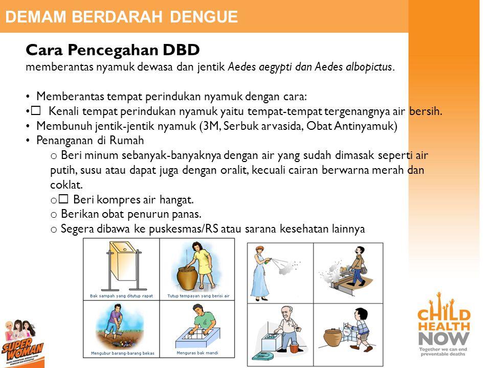 DEMAM BERDARAH DENGUE Cara Pencegahan DBD