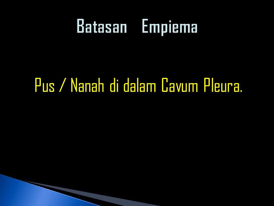 Pus / Nanah di dalam Cavum Pleura.