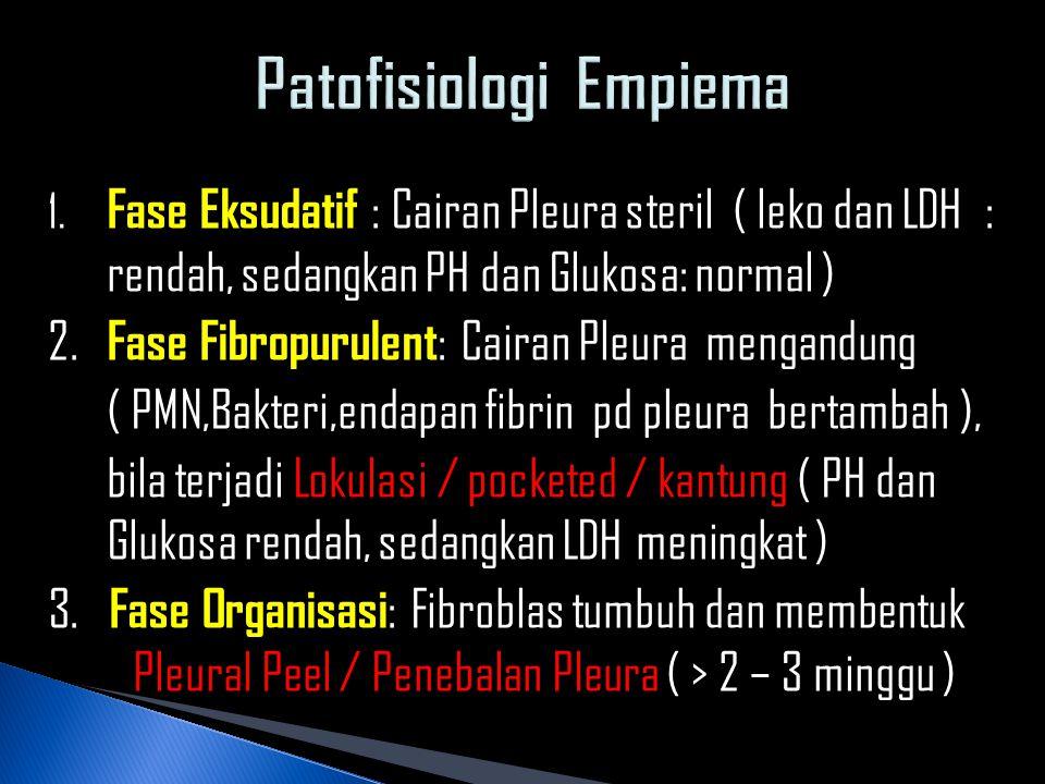 Patofisiologi Empiema