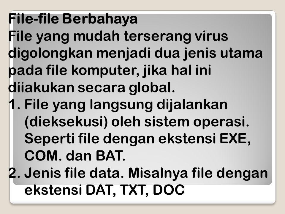 File-file Berbahaya File yang mudah terserang virus digolongkan menjadi dua jenis utama pada file komputer, jika hal ini diiakukan secara global.