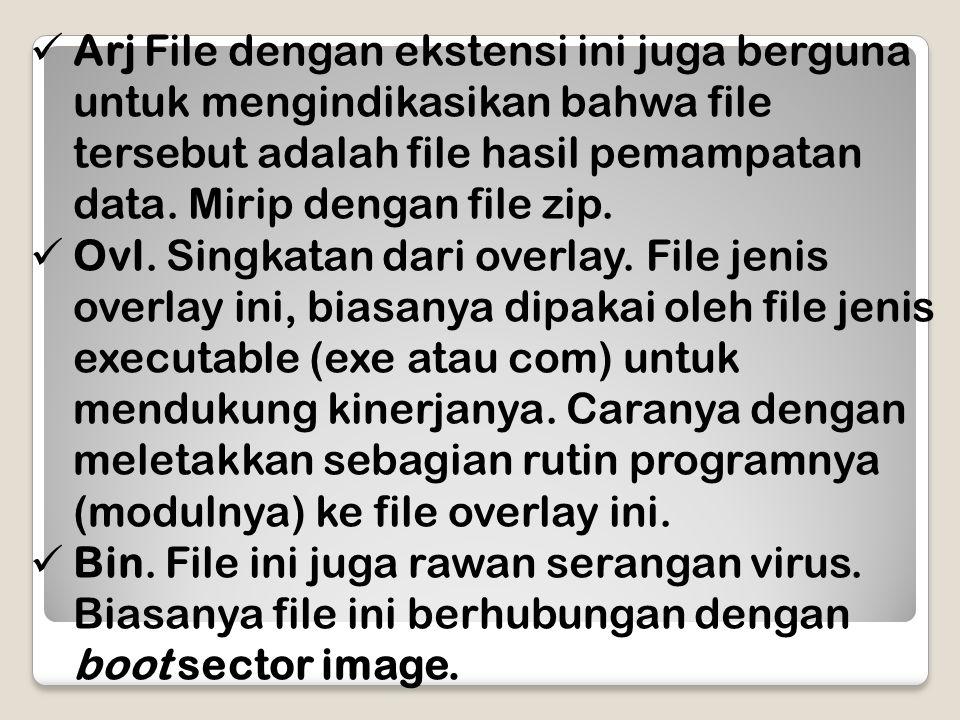 Arj File dengan ekstensi ini juga berguna untuk mengindikasikan bahwa file tersebut adalah file hasil pemampatan data. Mirip dengan file zip.