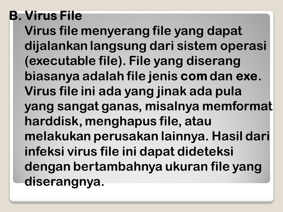 Virus File