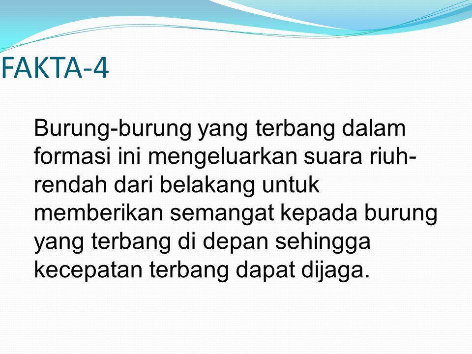 FAKTA-4