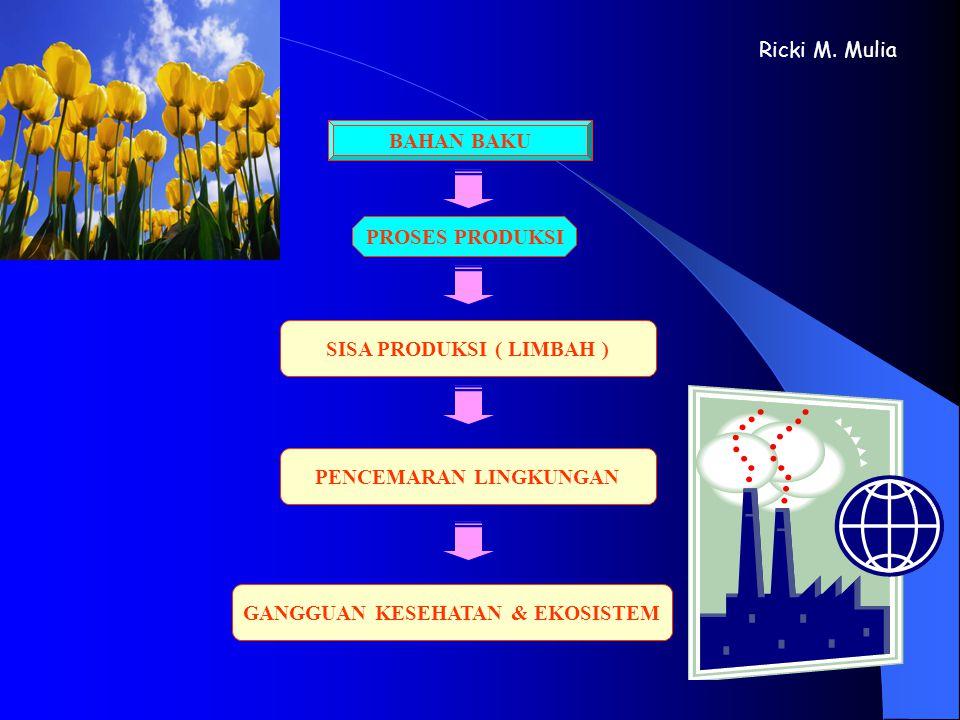 SISA PRODUKSI ( LIMBAH ) PENCEMARAN LINGKUNGAN