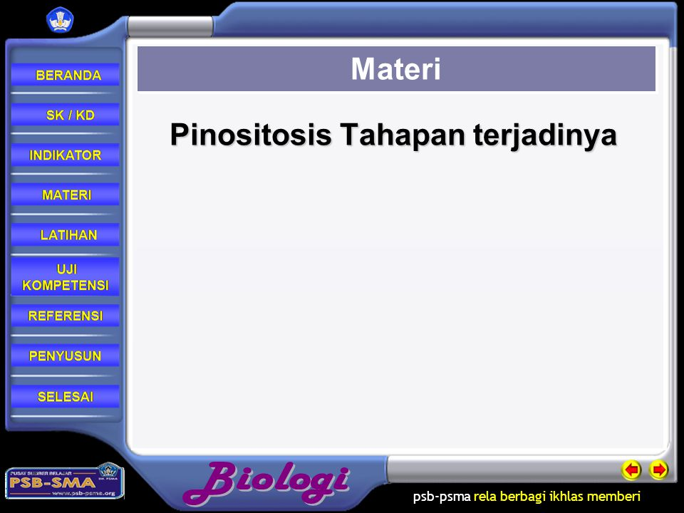 Pinositosis Tahapan terjadinya