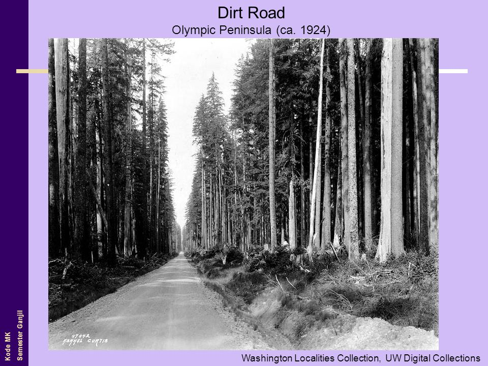 Olympic Peninsula (ca. 1924)