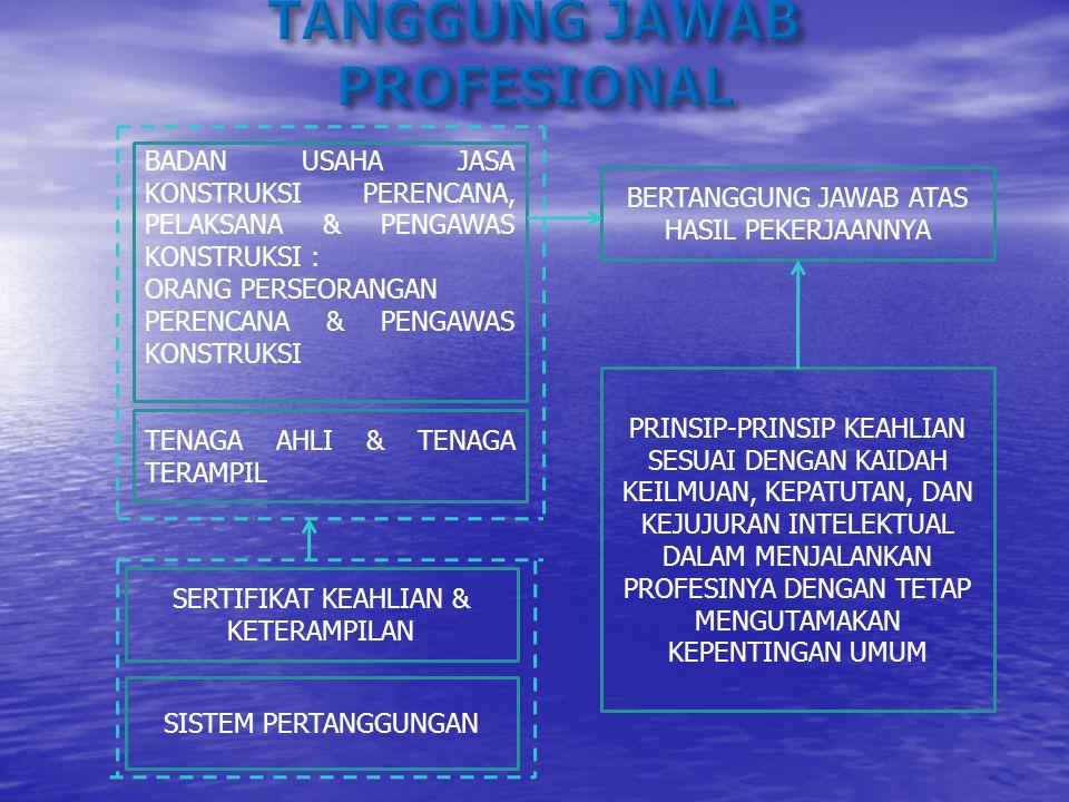 TANGGUNG JAWAB PROFESIONAL