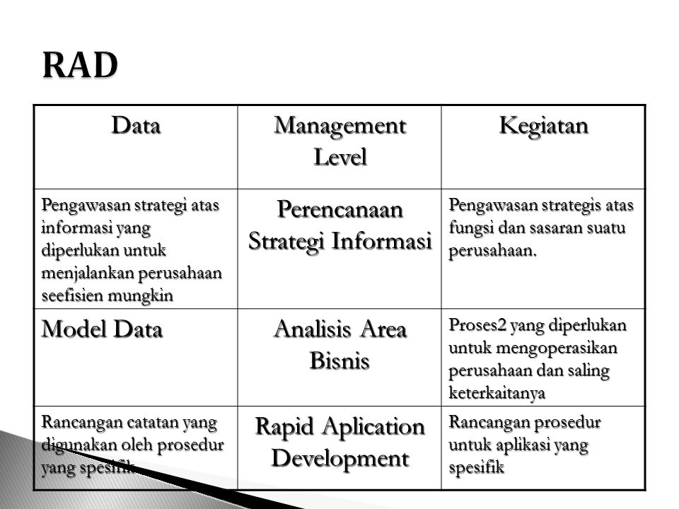 RAD Data Management Level Kegiatan Perencanaan Strategi Informasi